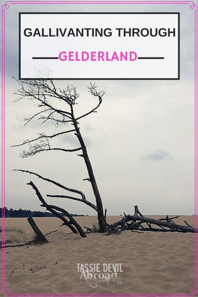 Gallivanting through Gelderland