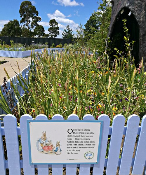 The Peter Rabbit Garden at Riversdale Estate