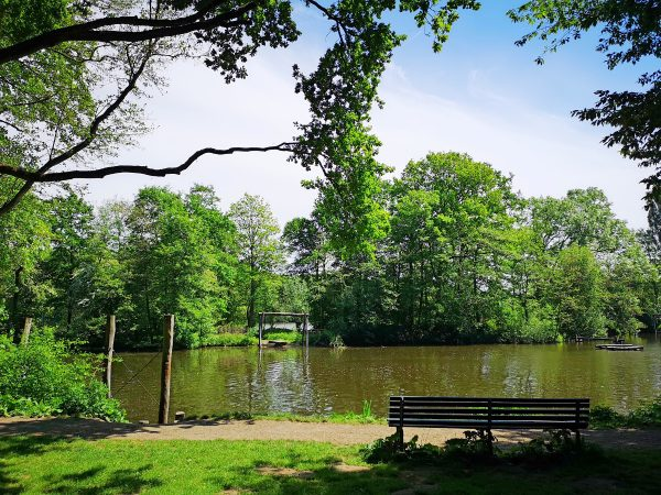 The ultimate guide to visiting Amsterdamse Bos, including all the fun things to see and do, written by a local!