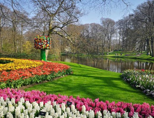 Everything you need to know to explore Europe's most amazing garden in the Netherlands: Keukenhof!